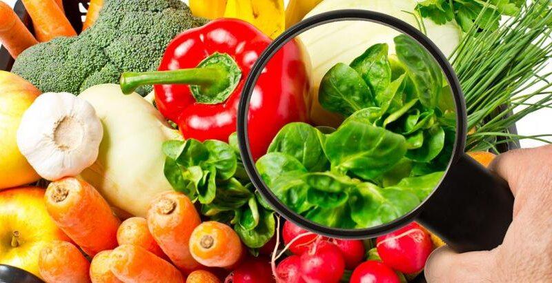 Charla sobre Inocuidad alimentaria durante la pandemia del COVID-19 en ULCB