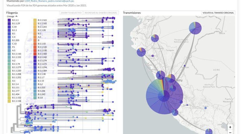 Proyecto de vigilancia genómica de SARS-CoV-2 de UPCH gana concurso del CONCYTEC
